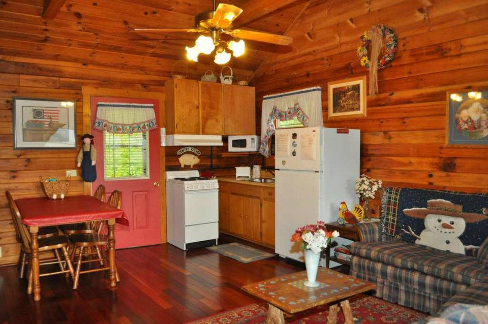 Cabin 1 Kitchen